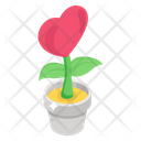 Love Growth Giving Love Heart Plant Icon