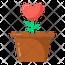 Love Growth Heart Plant Romantic Plant Icon