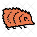Hedgehog Animal Forest Icon