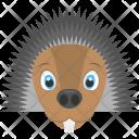 Brown Hedgehog Face Icon