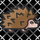 Hedgehog Pets Puppy Icon