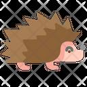 Hedgehog Forest Wild Animal Icon