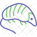 Hedgehog Porcupine Animal Icon