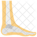 Heel Spur Foot Pain Heel Pain Icon