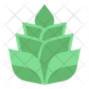 Heliconia Bloom Nature Icon