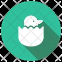 Hen Born Bird Icon