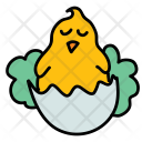 Hatching Chick Hen Icon