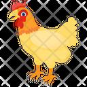 Hen Chicken Domestic Animal Icon