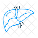 Hepatology Liver Detoxification Icon