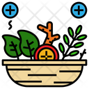 Herb Herbal Natural Icon