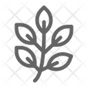 Herb Leaf Natural Icon