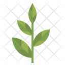 Herb Hot Drink Tea Icon