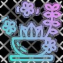 Herb Spa Plant Icon