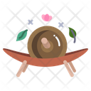 Herb Roller Roller Herbal Icon