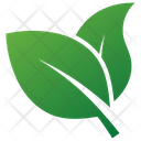 Herbal Leaves Design Icon