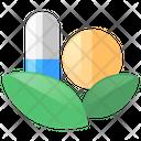 Herbal Medicine Herbal Natural Icon