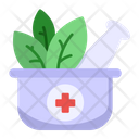 Herbal Medicine Herbal Ayurvedic Icon