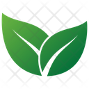 Herbal Willow Leaves Icon