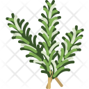 Herbs Rosemary Food Icon