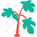 Generic Herbs Parsley Icon