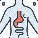 Hernia Inguinal Stomach Icon