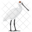 Herons Feather Creature White Herons Icon