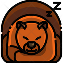 Hibernation Hibernation Season Season Icon