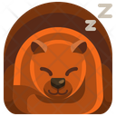 Hibernation Icon