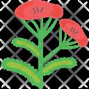 Hibiscus Flower Rose Icon
