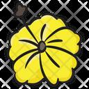 Hibiscus Blossom Flower Icon
