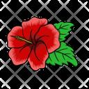 Hibiscus Flower Nature Icon