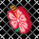 Hibiscus Flower Malaysia Icon