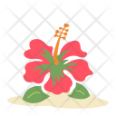 Hibiscus flower Icon