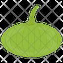 Hokkaido Squash Green Icon