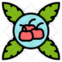Holly Fruit Red Icon