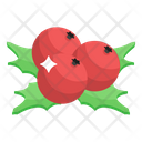 Christmas Berries Fruits Healthy Food Icon