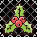 Holly Berries Christmas Berries Festive Berries Icon