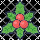 Holly Berries Acai Berries Berries Icon