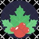 Mistletoe Holly Berries Icon