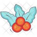 Holly Berry Christmas Berry Mistletoe Icon