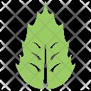 Holly Leaf Icon