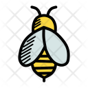 Honey Bee Insect Icon