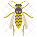 Bees Insect Flying Insect Icon