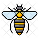 Honeybee Bumblebee Bee Icon