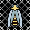 Bee Wasp Bug Icon