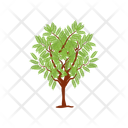 Honey Locust Fruit Tree Wild Tree Icon