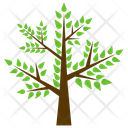 Honey Locust Icon