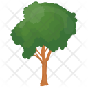 Honey Locust Thorny Icon