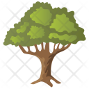 Honey Locust Thornless Icon