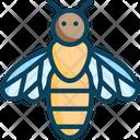 Honeybeem Honeybee Apis Icon